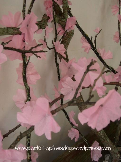 cherry blossoms via Pork Chop Tuesday