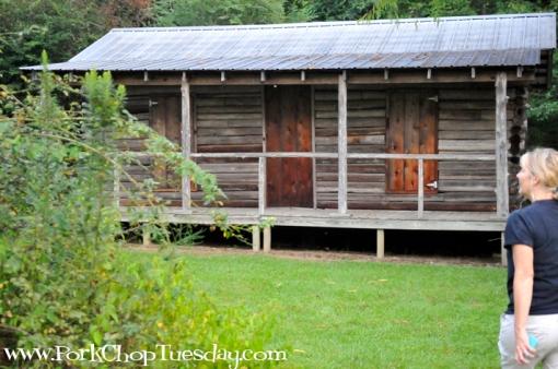 Ferncliff Cabin