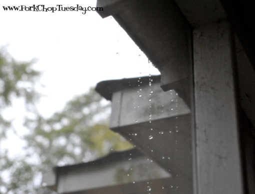 rain dripping off the roof