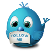 twitter-follow-me-icon copy