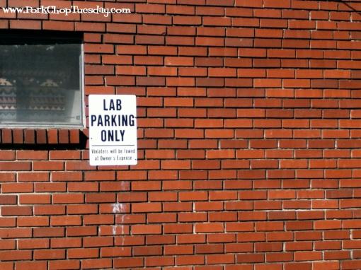 Lab Parking