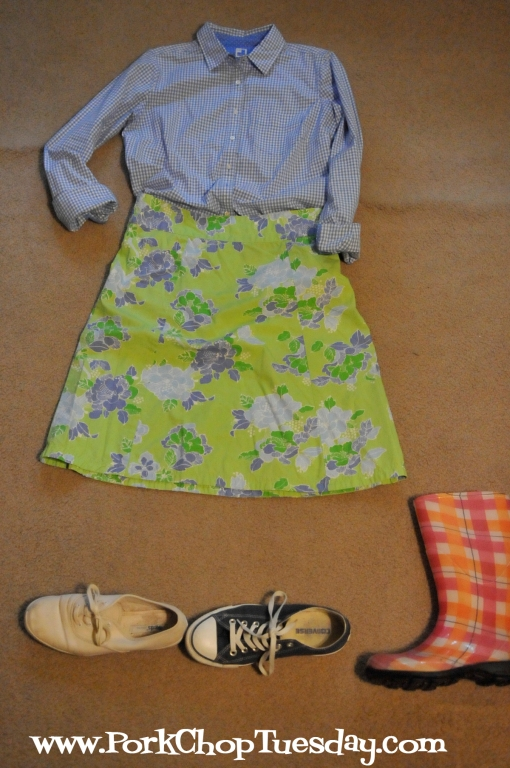 light blue gingham with floral skirt