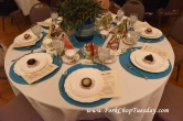 pretty blue placemats
