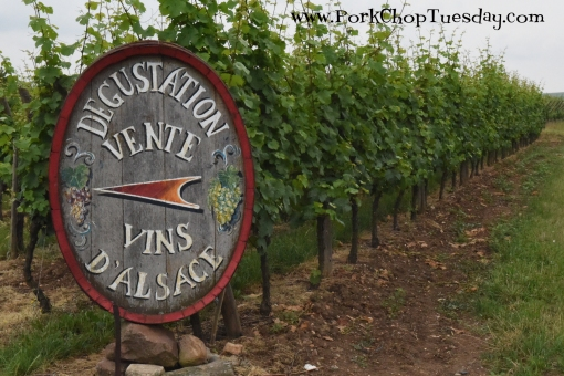 vineyard-sign