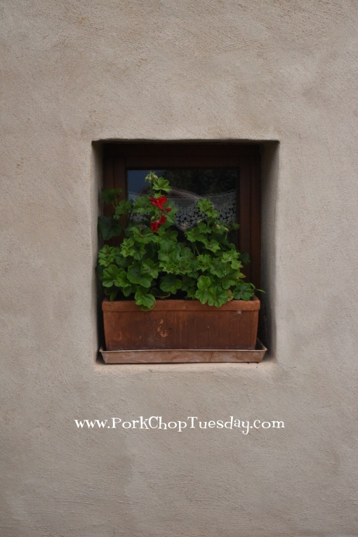 window-with-flowers